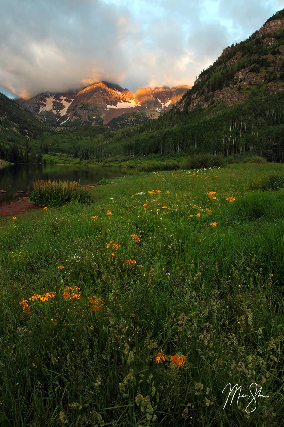 Open edition fine art print of Wildflowers At Maroon Lake from Mickey Shannon Photography. Location: Aspen, Colorado