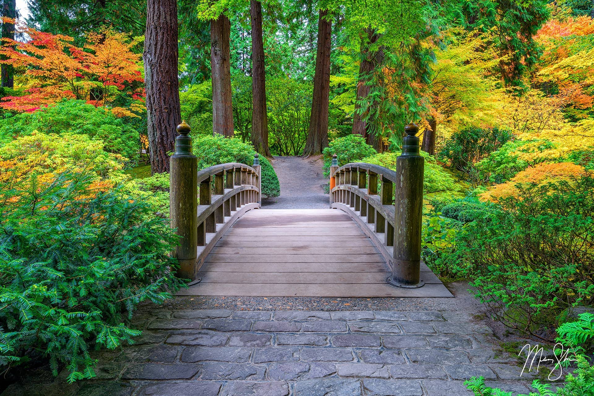 Limited edition luxury fine art print of Portland Japanese Garden bridge in Oregon from Mickey Shannon Photography. Titled Bridge to Beauty.