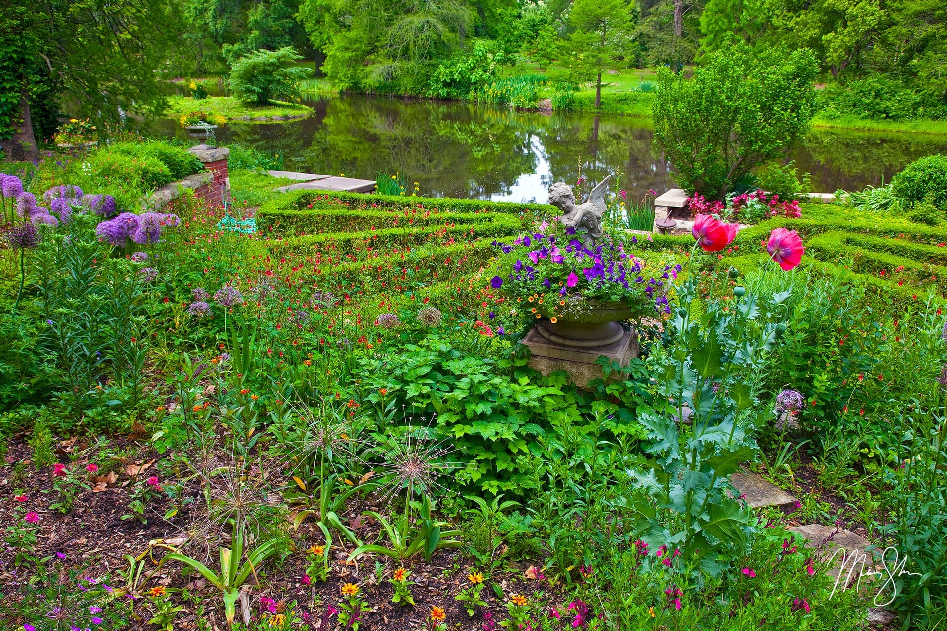 Open edition fine art print of Gardens of Bartlett Arboretum from Mickey Shannon Photography. Location: Bartlett Arboretum, Belle Plaine, Kansas